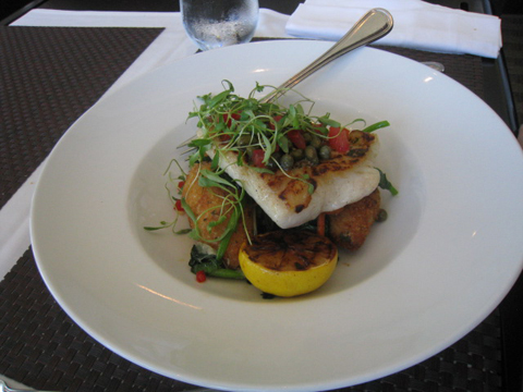 Pan Seared Fillet of Pacific Halibut, $35