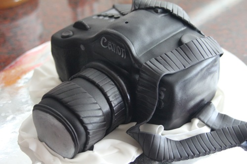 delush-bakery-chicago-camera-cake-2